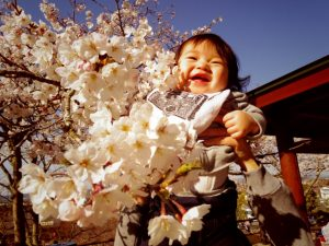 東京都内で赤ちゃんが楽しめる花見