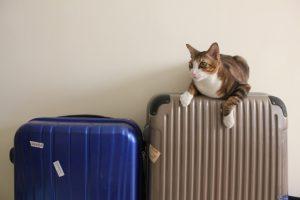 スーツケースを電車内に持ち込む時