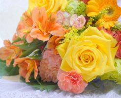 母の日にカーネーション以外で花のおすすめ